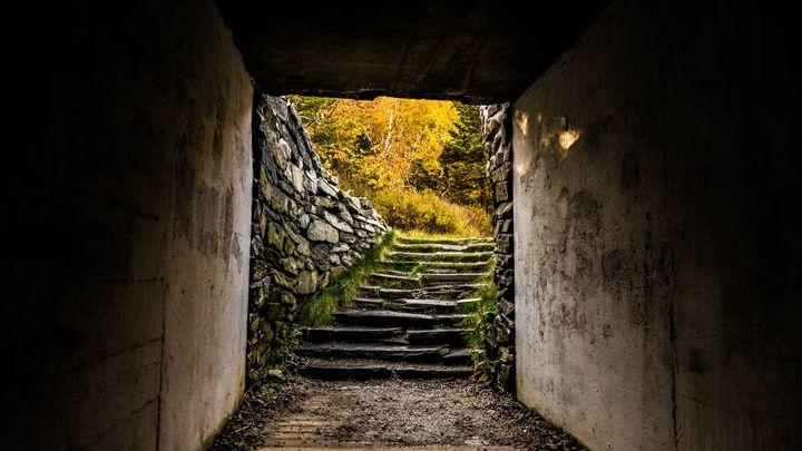 Autumn Stairs - Max Ablicki - Adventure Photography