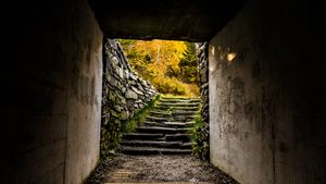 Autumn Stairs - Max Ablicki - Adventure Photography