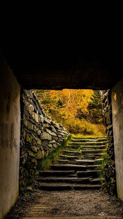 Fall Staircase - Max Ablicki - Adventure Photography