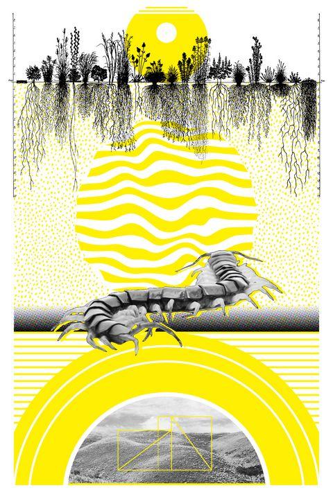 Inner Centipede - CYBERGOTHGALOOT