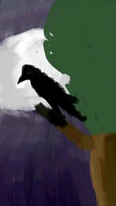 Night crow