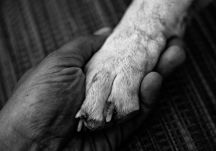 Love in Hand - Mike Sinko Photography