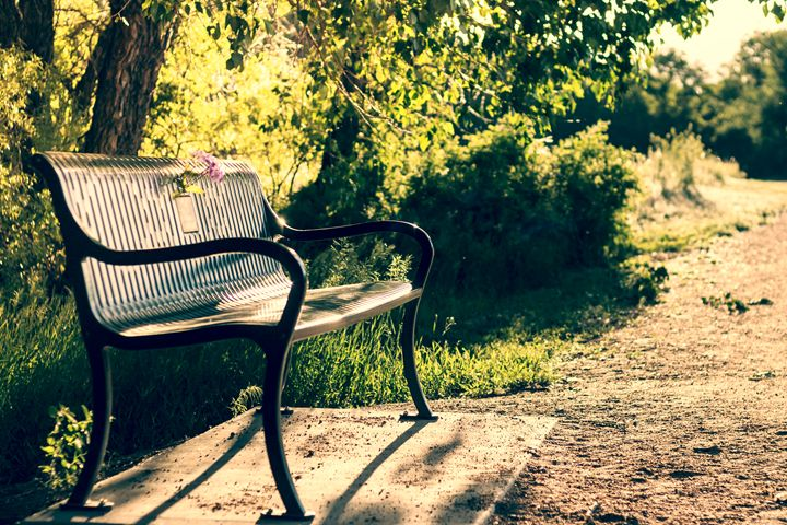 Park Bench - Mike Sinko Photography