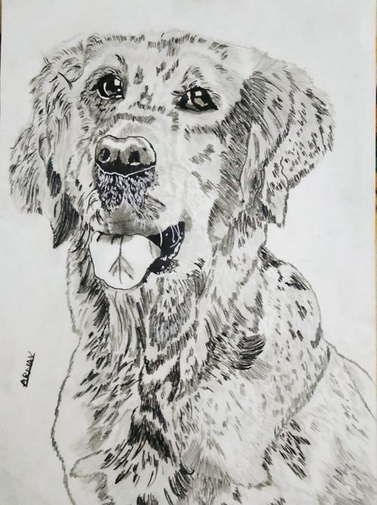 Drawing of a dog - Sketching with arnav