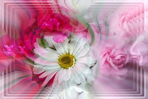 Grocery Store Flowers - Deb Potis Photography
