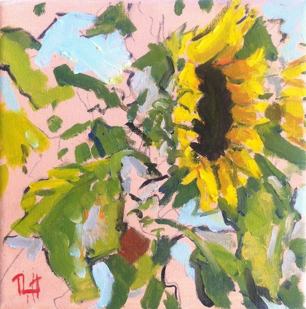 Sunflowers - A Studio in Provence