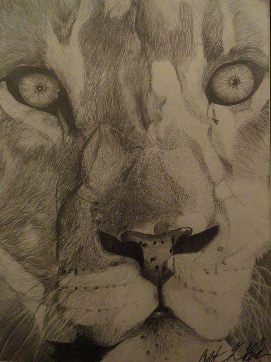 Lion of Judah - Anthony Honor