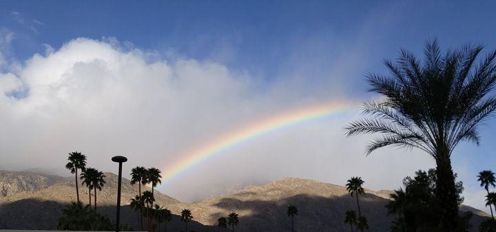 Palm Spring Rainbow - A Rare Bird - Nancee