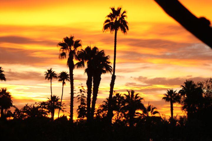 Good Morning Palm Springs - Nancee