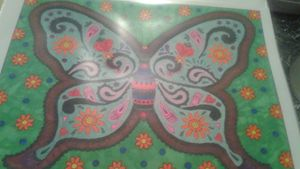 HandMade Butterfly Picture