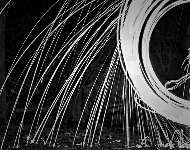 Light Play (Black and White) - Pandemonium Gallery