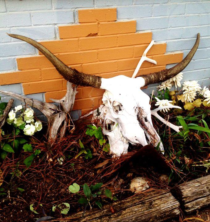 Skull in Brush - Katelyn Rose Original Art