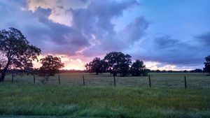 Country Sunset by C. Darden