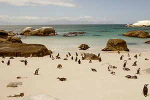 Amazing Landscapes of South Africa