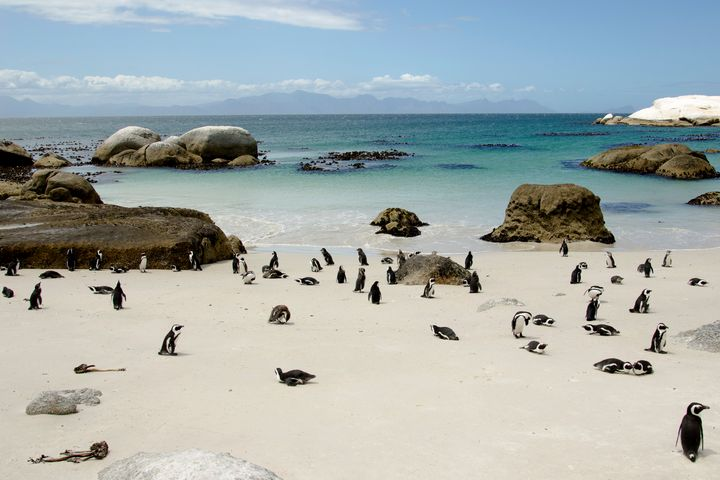 Amazing Landscapes of South Africa - photo land