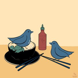 the birds go to the noodle house