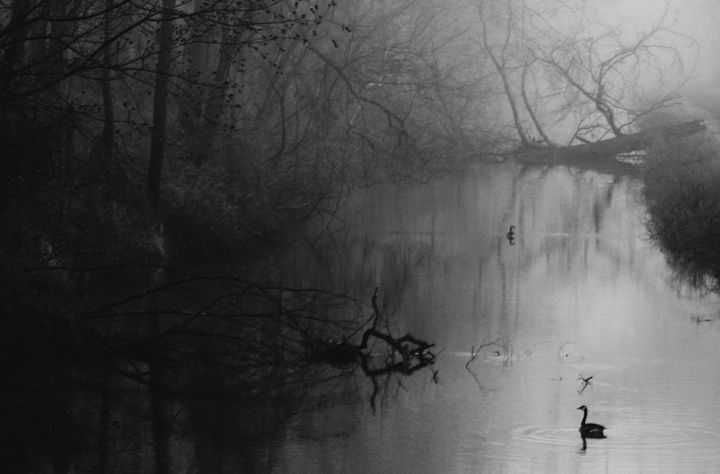 beyond dreams - ThomasW Photography