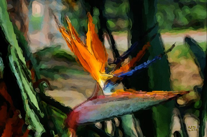 Bird Of Paradise - Digital Paintings And Photos by Alfred Trerotola