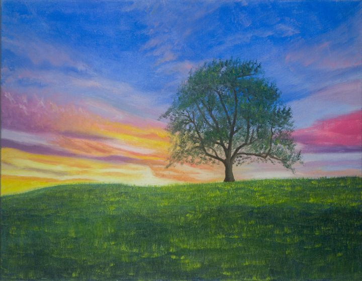 Tree and Sunset - Evan Arking