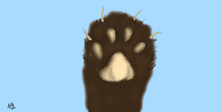 Cat foot artwork - Sunshine art