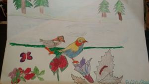 Nature - Jose Virgen