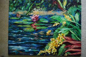 Waterlillys