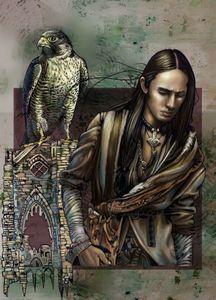 Man and falcon