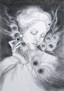 Peackok feathers - Victoria Sien