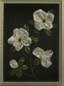 Magnolia by Esmeralda Jaupaj - albo gallery