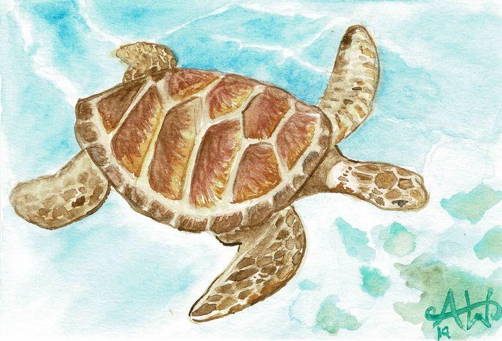 Turtle - Angie Worlton