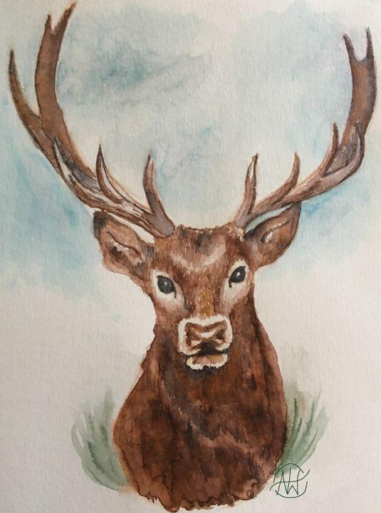 White Tail Deer - Angie Worlton