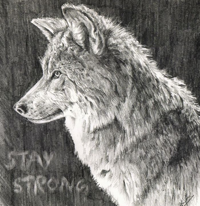 The Wolf - anjan
