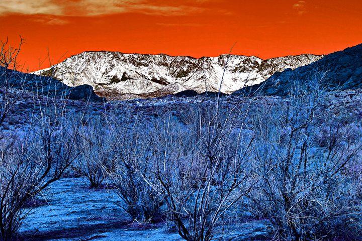 Sunset Winter - Robert Fein Photography