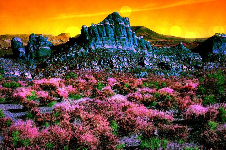Purple Haze - Robert Fein Photography