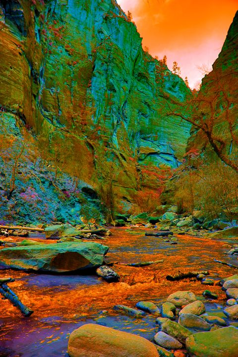 Virgin River, Zion - Robert Fein Photography