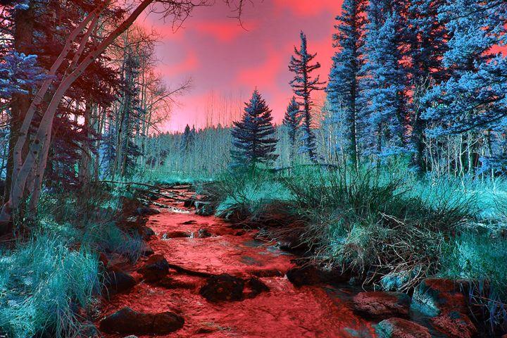 Burning Sky - Robert Fein Photography