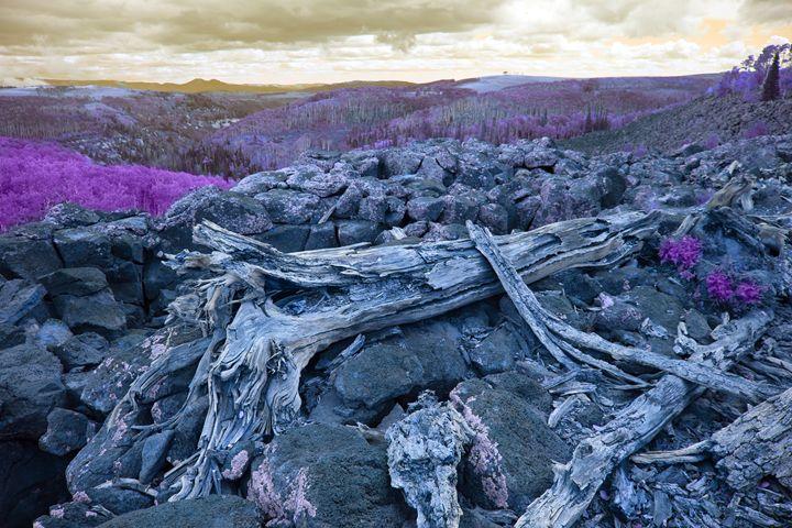 Apocalyptic Earth - Robert Fein Photography
