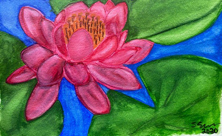 Lotus - stephspiroff