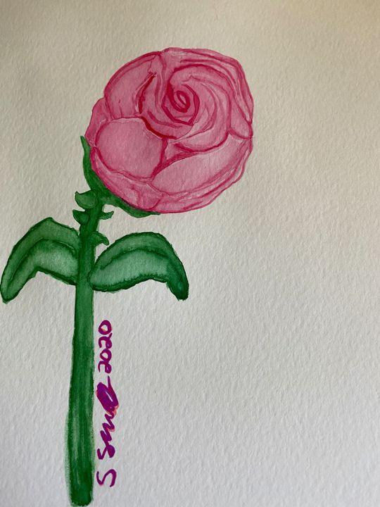 Rose - stephspiroff