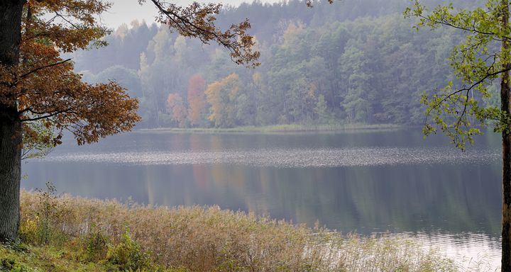 Beautiful autumn - Sergejus Lamanosovas - Severas