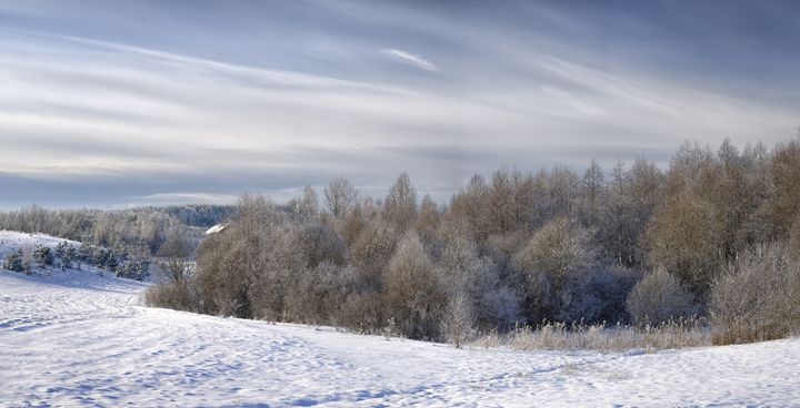 Beautiful rural landscape in snow. - Sergejus Lamanosovas - Severas