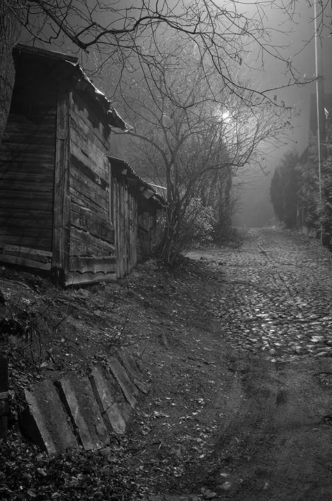 Fog at night - Sergejus Lamanosovas - Severas