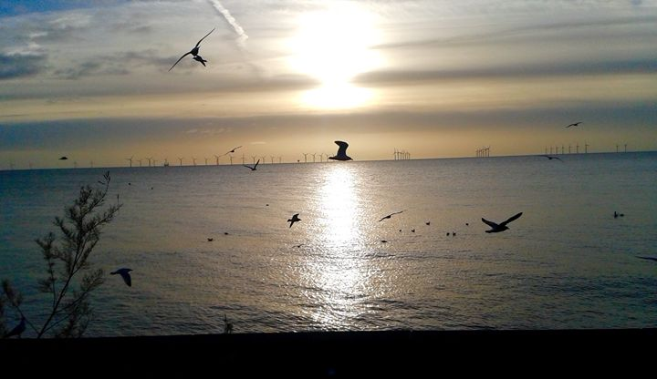 Watery sun and birds in flight - L.J.W Creations