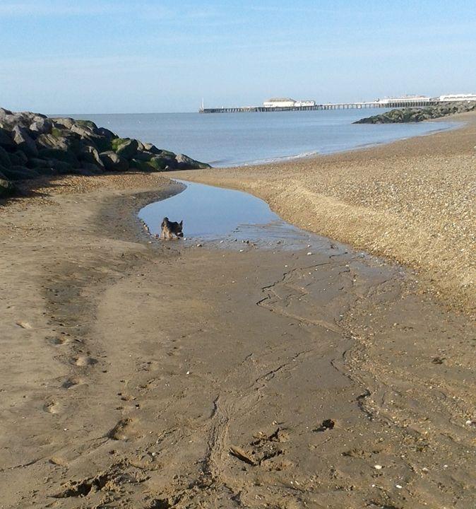 Sand pool, rocks. - L.J.W Creations