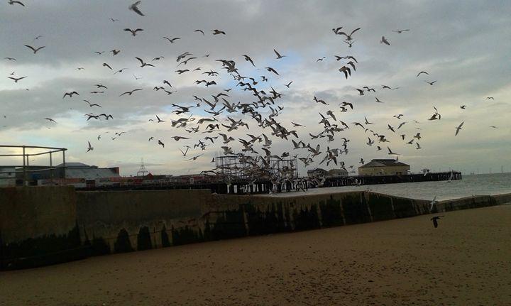 Flock of Seagulls taking off - L.J.W Creations