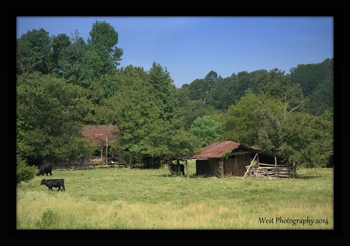 Old Farm - West Photography