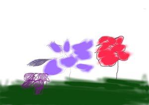 rose -  Benners.charlton