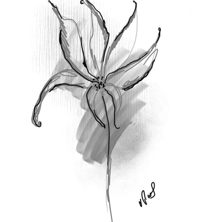 black flower - Vanesse purves art gallery