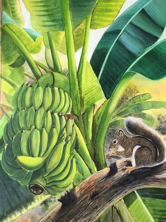 Banana and squirrel - suwan