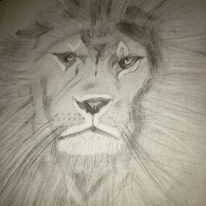 Eye of the Tiger - Cruz Creations